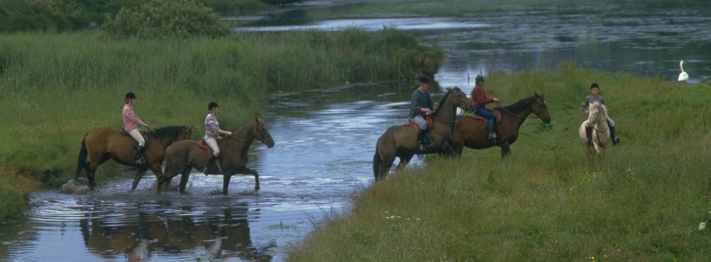 English and Horse-Riding Programme in Cork